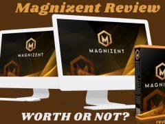 Magnizent Review